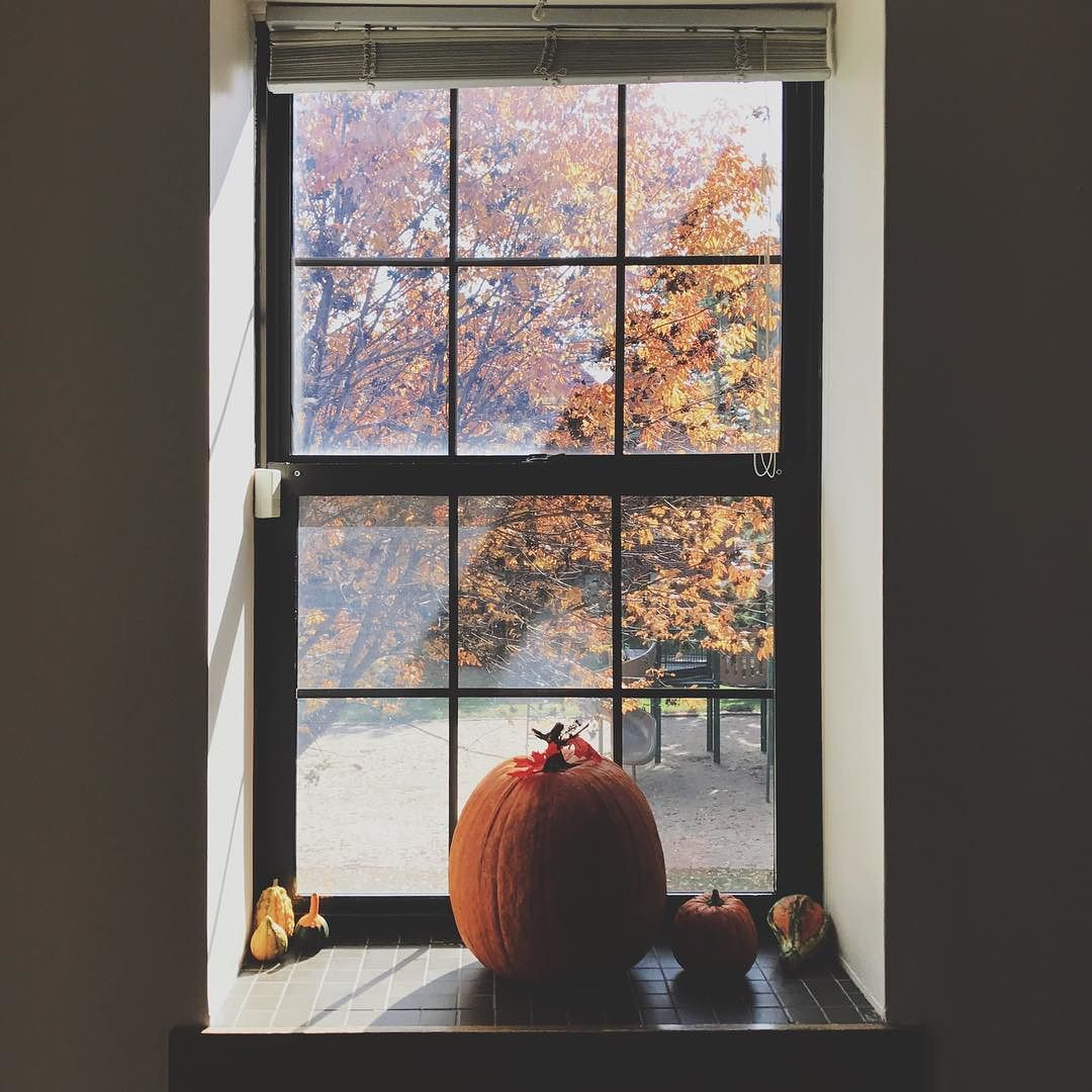 i-like-autumn-because-of-the-balance-of-the-warmth-of-color-and-the-coolness-of-the-air--boystownliving-igersomaha-omamag_30440299356_o.jpg