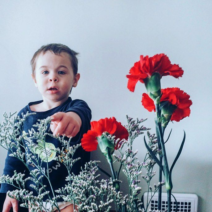 micah-dont-touch-mommys-flowers--thirteen-years-in-a-row-of-getting-sarah23marie-three-red-carnations--aksarbenliving-micahmasato-valentinesday-carnations-tradition_24740743040_o.jpg